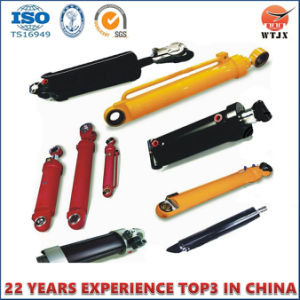 Customized Small Size Hydraulic Cylinder for Agriculture Machinery pictures & photos