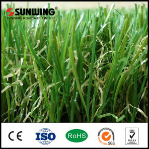 Chinese Cheap PE Artificial Grass Carpet for Home Landscaping pictures & photos