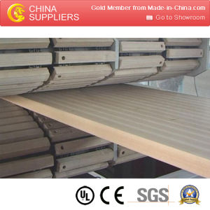 PVC Hollow Board Extrusion Line pictures & photos