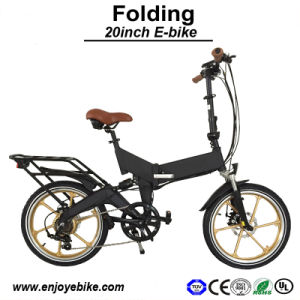 Special Wheel Set Powerful Motor E-Bicycle Electric Bicycles E Bike Electric Bike (PE-TDN11Z)