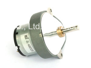 Totally Encolsed Gearbox Metal Gear Engine Micro 24V DC Motor pictures & photos