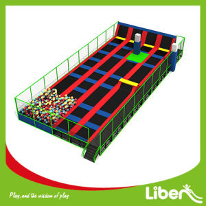 Liben Top-One Trampoline Enclosure for Sale pictures & photos