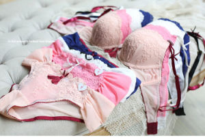 Hot Sale Embroidery Lace Bra and Panty Set (FPY333) pictures & photos