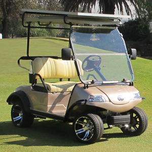Solar Panel Electric Golf Car/Cart/Buggy (DEL3022G, 2-Seater) pictures & photos