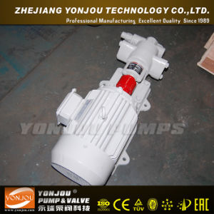 Yonjou Electric Oil Pump pictures & photos