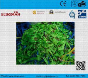 En1492-1 Accessories Sling pictures & photos