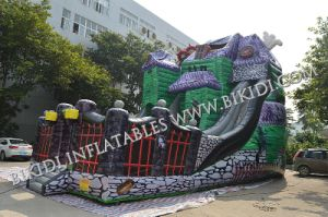 Good Price Giant Inflatable Water Slide for Adult and Kids, Inflatable Jumping Castle Play Field for Sale pictures & photos