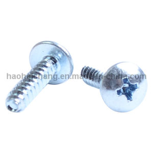OEM Hardware Heating Appliance Stainless Steel Screws pictures & photos