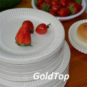 Disposable White Plain Paper Plates pictures & photos