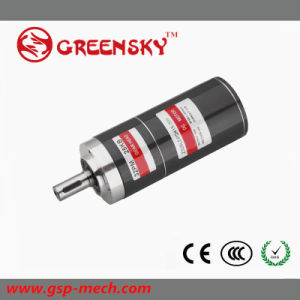 GS Export to European 12V 10W 22mm Planetary Brushless DC Motor pictures & photos