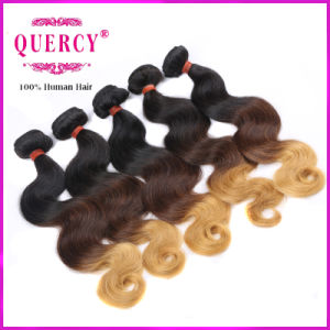 2016 New Products 100% Human Ombre Hair Braiding Hair Brazilian Body Wave Human Hair pictures & photos