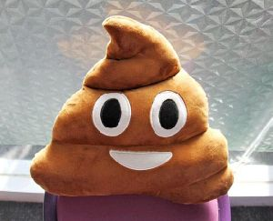 Poop Shaped Plush Emoji Pillow pictures & photos