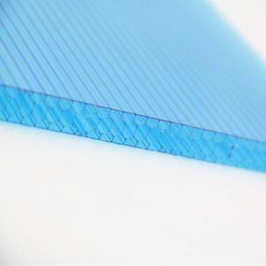 Light Weight Transmitting Polycarbonate Honeycomb Core Plastic From China pictures & photos