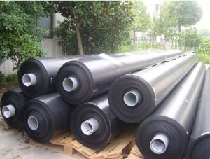Vertical Farming HDPE Geomembrane Liner for Shrimp Pond pictures & photos