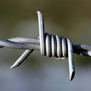High Quality Galvanized Barbed Wire pictures & photos