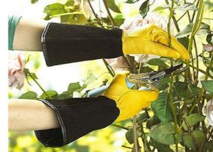 Long Cuff Glove-Full Leather Glove-Yellow Glove-Garden Glove pictures & photos