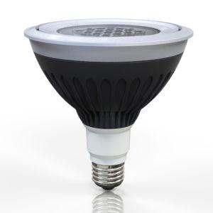 Waterproof LED PAR38 Spotlight for Landscape Lighting pictures & photos