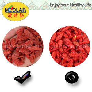 Medlar Lycium Barbarum Polysaccharides Goji Fruit pictures & photos