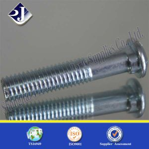 Round Head Oval Neck Lock Screw Track Bolt pictures & photos