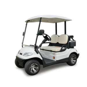 Two Seaters Good Price Electric Sightseeing Golf Car pictures & photos