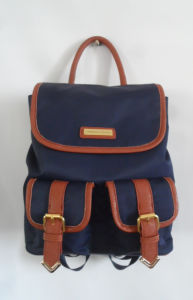 Fashion Designer School Bag Travel Backpack in Your Own Brand (A-009) pictures & photos