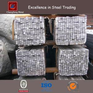 Structural Hot Rolled Flat Steel Bar (CZ-F15) pictures & photos