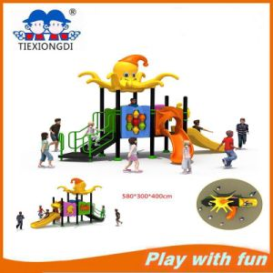 China Amusement Park Outdoor Playground Equipment Galvanzized Pipe Diameter 114 pictures & photos