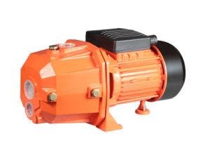 Dp Series Electric Water Pump/Jet Self-Priming Pump