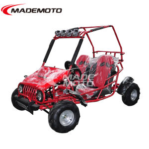 Hot Selling Double 2 Seats Cheap 110cc 150cc Buggy Go Karts for Sale pictures & photos