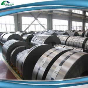 Galvanized Steel Coil/ Strip Hot Sale