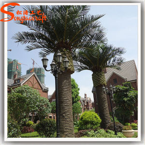 Garden Decoration Fiberglass Artificial Date Palm Tree pictures & photos