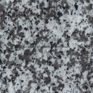 Natural Stone Granite G439 Grey Slabs for Tiles and Countertops