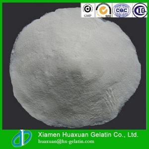 Cheap Price Best Quality Fish Collagen pictures & photos
