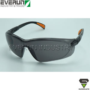 Safety Eyewear Eyes Protector (ER9309-1) pictures & photos
