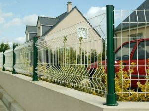 Factory Supply Garden Fence Euro Fence Low Price pictures & photos