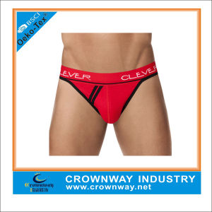 Custom Made Mens Exotic Underwear Brand pictures & photos
