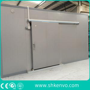 Automatic Refrigeration Storage Freezer Room Sliding Door pictures & photos