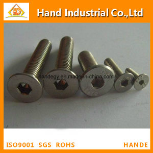 "Ss Golden Supplier 18-8 1/4"" Hex Socket Flat Head Screw pictures & photos"