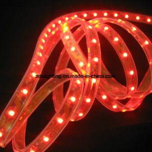 60LEDs/M SMD3528 Blue LED Light Strip pictures & photos