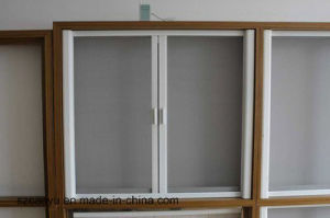 Home Anti-Theft Retractable Screen Construction Windows and Door pictures & photos