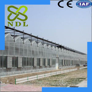 High Quality Durable Simple and Beautiful PC Board Greenhouse pictures & photos