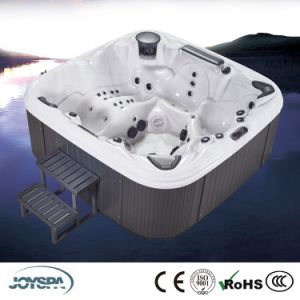 Hot Sale PVC Skirt and Steps Outdoor Balboa System Whirlpool SPA pictures & photos