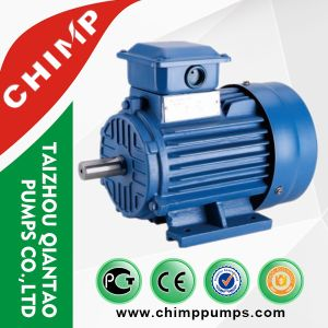 Y2 2pole/4pole Cast Iron Three Phase Electric Motor with Ce pictures & photos