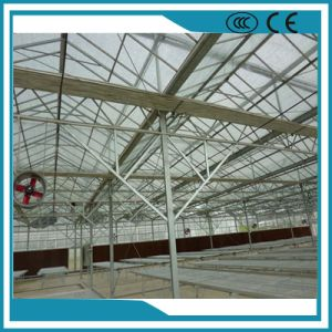 High-Quality Vegetable Growing Intelligent Glass Greenhouse pictures & photos