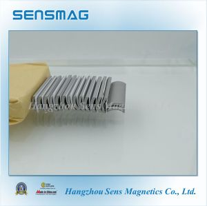 ISO9001: Permanent Rare Earth SmCo2: 17 Arc Magnet pictures & photos