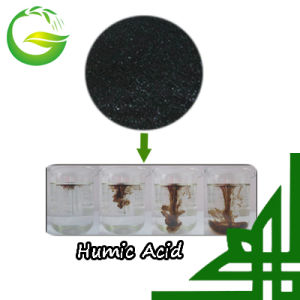 Humic Acid Powder From China Market pictures & photos