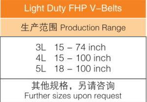 Light Duty Fhp V-Belts 3L 4L 5L pictures & photos