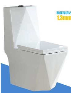 Sanitaryware Dual Fulsh Colorful Decoration Toilet Seat pictures & photos