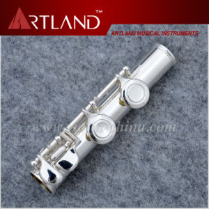 16 Closed Holes Silver Plated Imported Professional Cupronickel Flute (AFL5509) pictures & photos