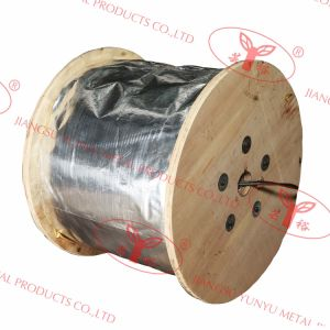 Wire Rope for Elevator - Ropes for Traction Drive Elevators/Special Traction Ropes of Smaller Diameter pictures & photos